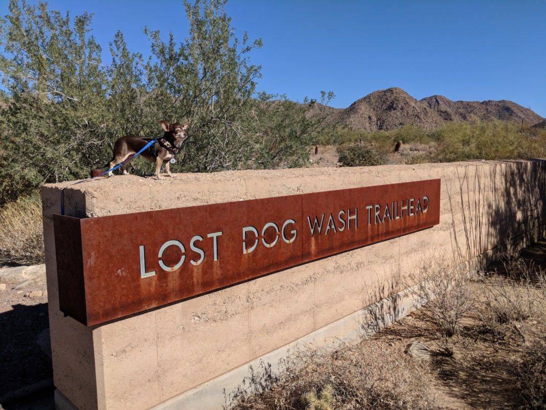 Arizona Weekend Getaway lost dog wash trail bebot