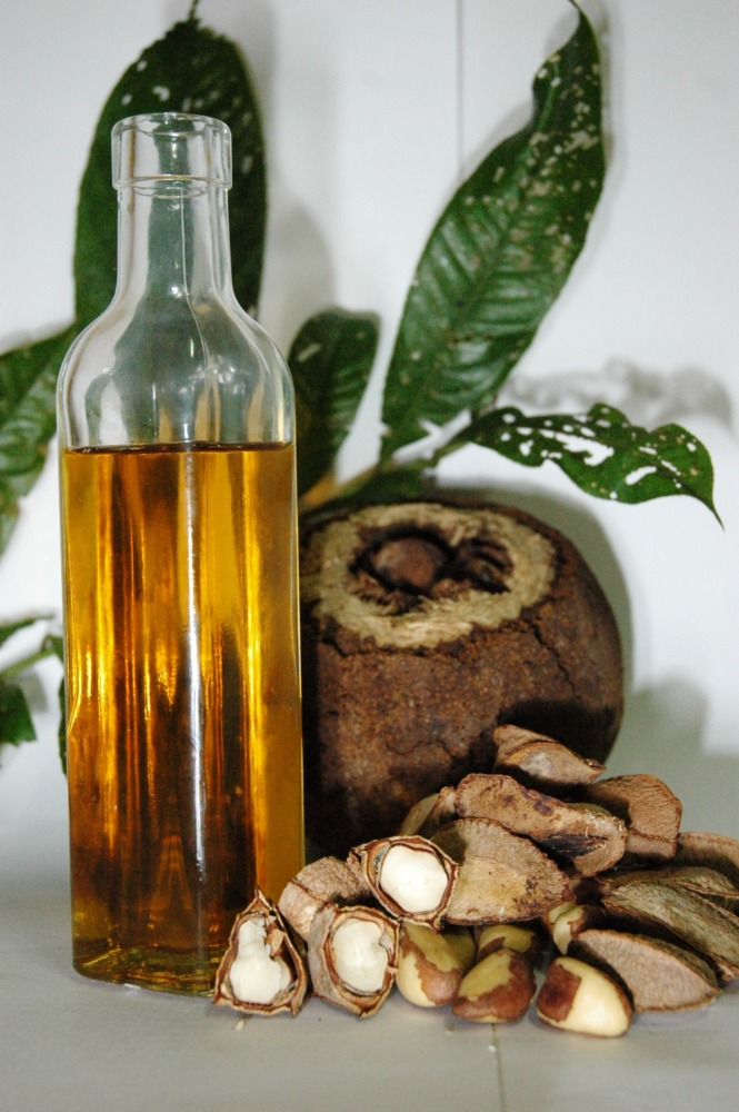 nourishing brazil nut oil