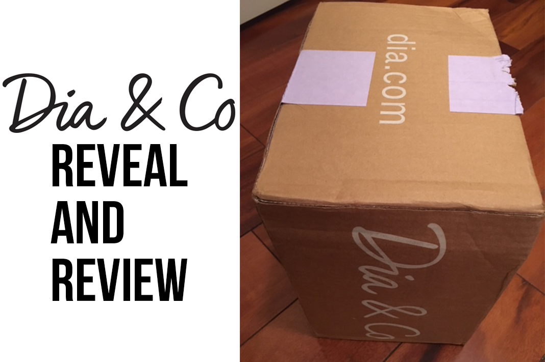 dia&co reveal reveal plus size fashion subscription box