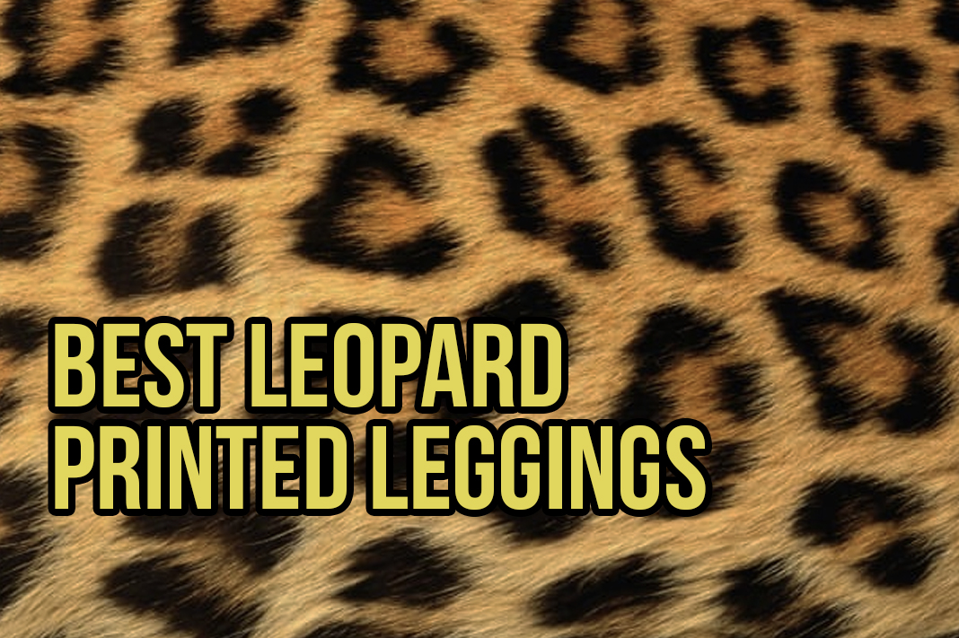 best leopard leggings schimiggy reviews