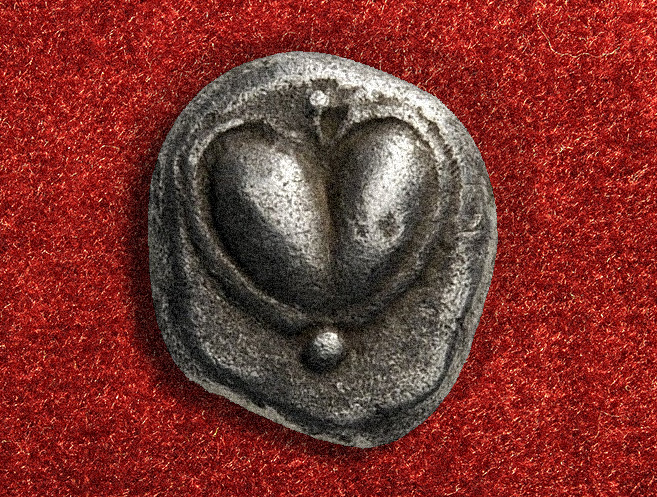 silphium-heart-coin-shape depiction