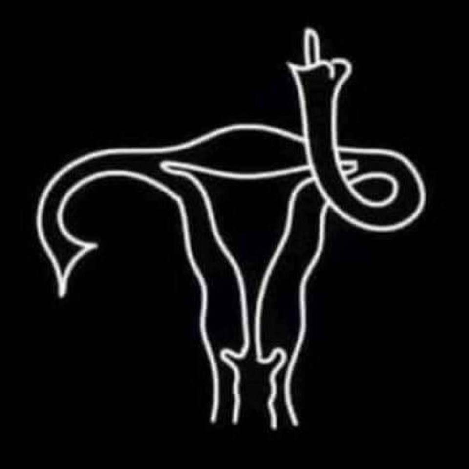 abortion ban meme uterus throwing middle finger