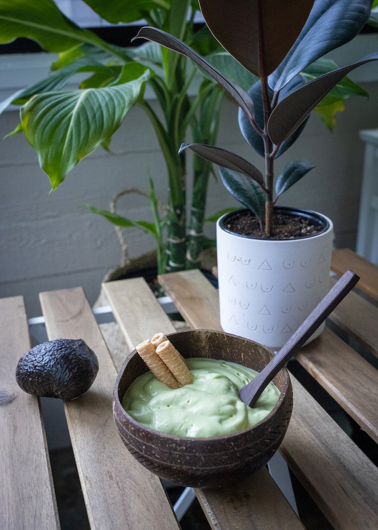 vietnamese avocado smoothie recipe