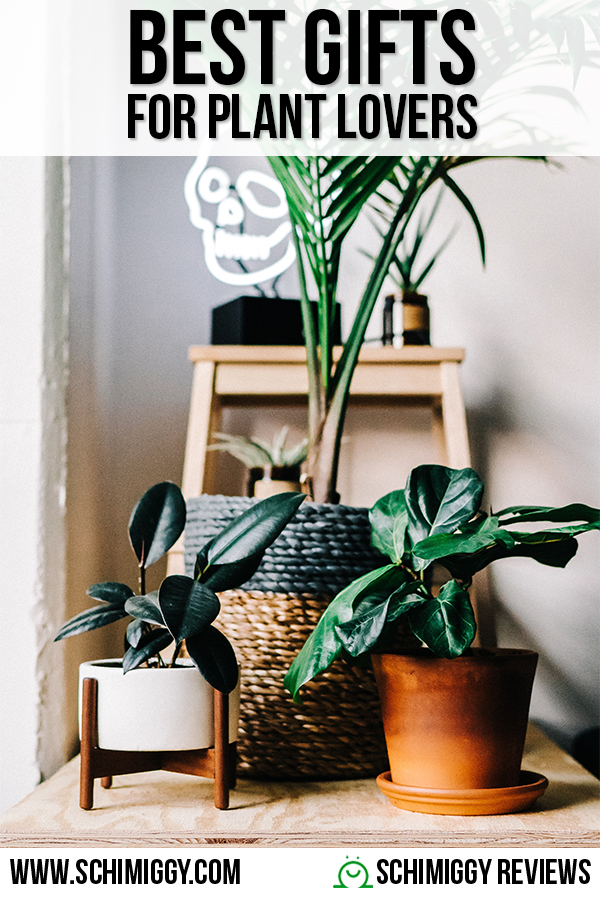 Best Gifts For Plant Lovers Schimiggy Reviews