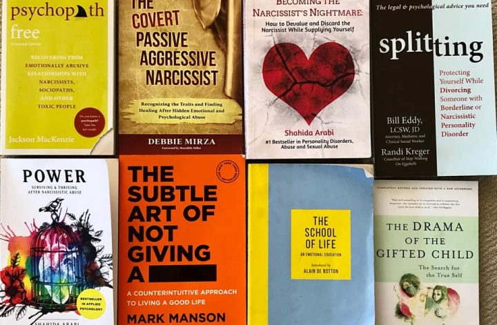recommended narcissist books personality disorder
